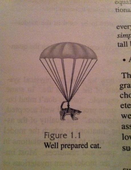 prepared,cat