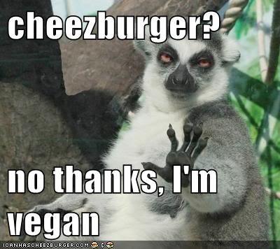 Cheezburger Image 7104517376