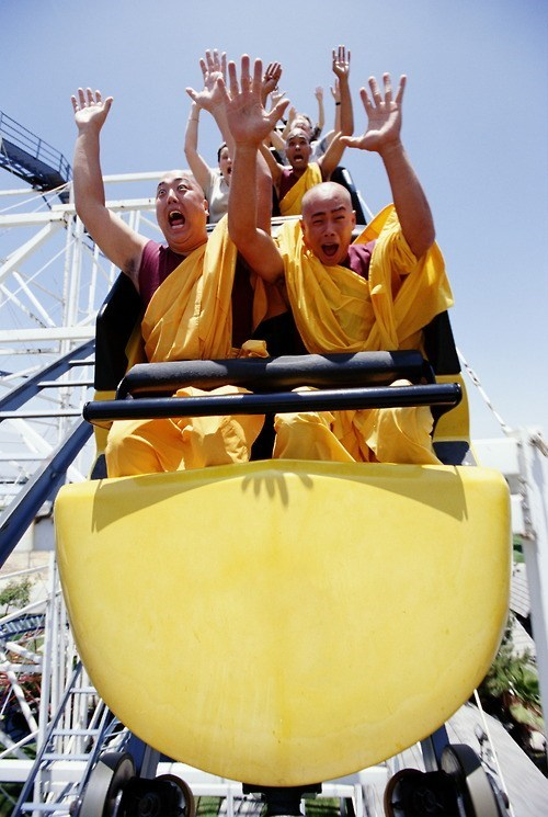 monks whee roller coaster - 7104738304