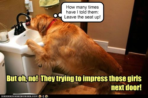How many times have I told them: Leave the seat up! But oh, no! They trying to impress those girls next door!