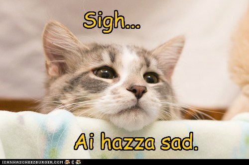 Sad,Cats