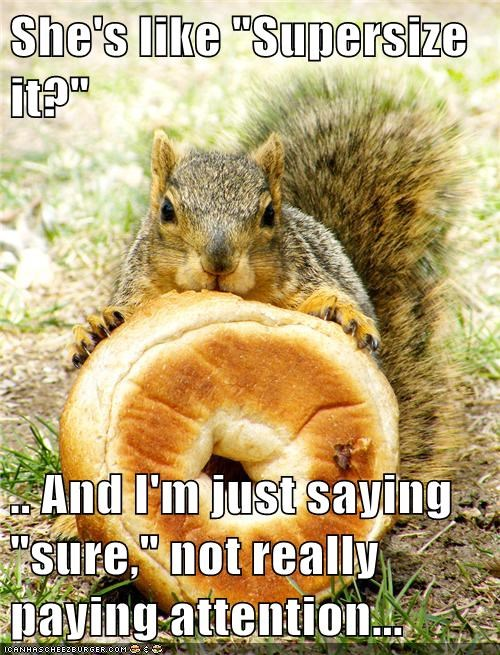 giant,bagel,squirrels,super size,mistake