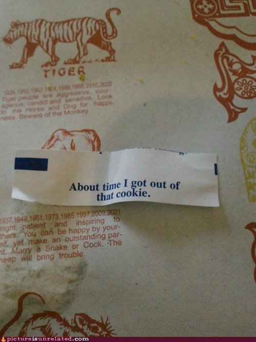 fortune cookie - 7105636864