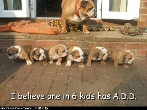 I believe one in 6 kids has A.D.D.