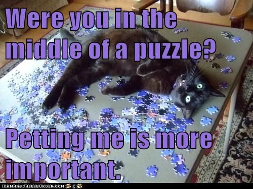 Were you in the middle of a puzzle? Petting me is more important.