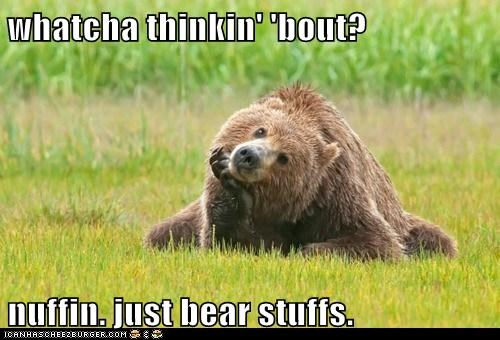 whatcha thinkin' 'bout? nuffin. just bear stuffs.