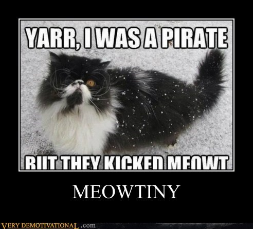 puns pirates mutiny Cats - 7106938880
