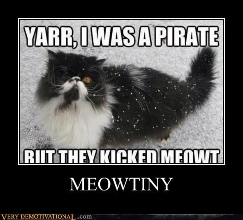 puns pirates mutiny Cats - 7106938880