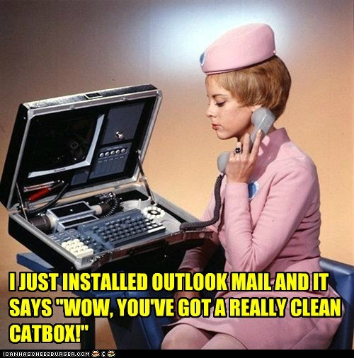 cat lady phone computer - 7107644672
