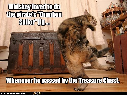 sailor,treasure,pirates,Cats