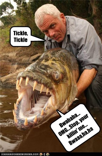 river monsters,jeremy wade,tickling,laughing,fish