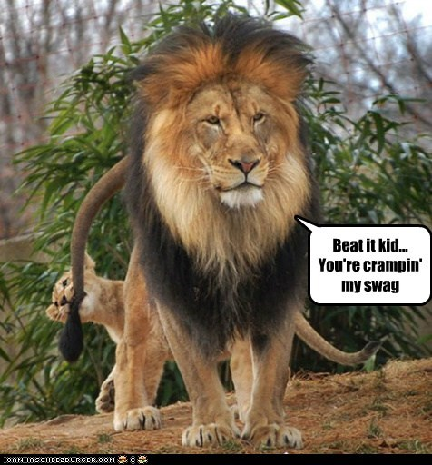 biting lions swag kids tail cubs beat it