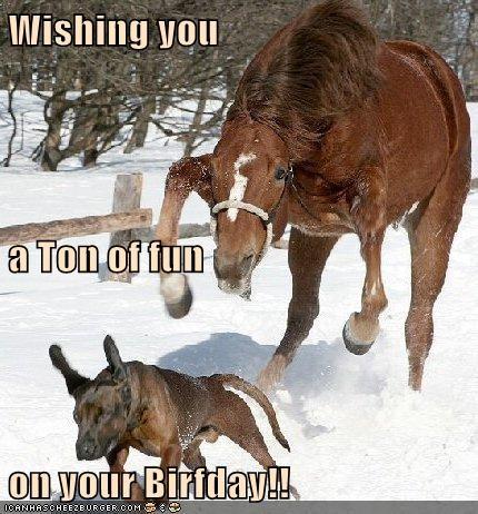Wishing you a Ton of fun on your Birfday!!