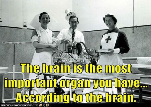 brains meta ego