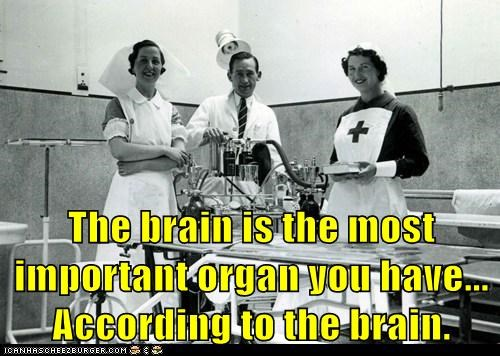 brains meta ego - 7109997824