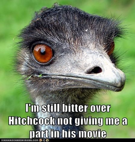 ostriches,hitchcock,movies,bitter,the birds