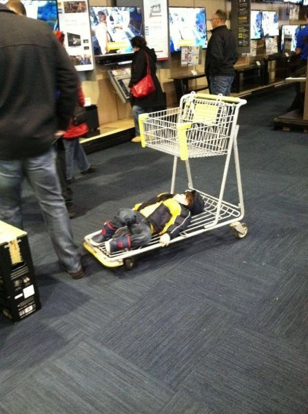 shopping,shopping cart,sleeping