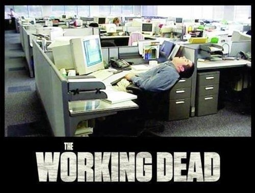 cubicles,zombie,the working dead,monday thru friday,g rated