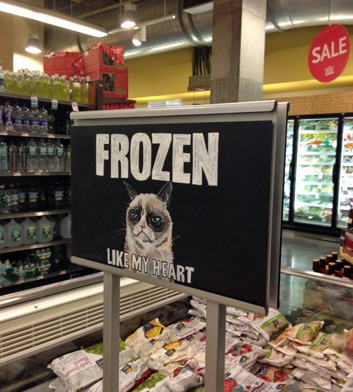 IRL signs grump cat frozen - 7111188480