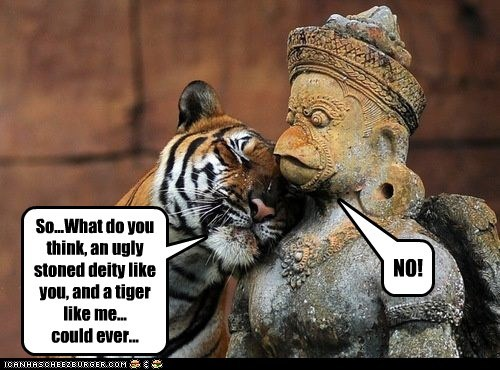 flirting,tigers,statue,hugging,no