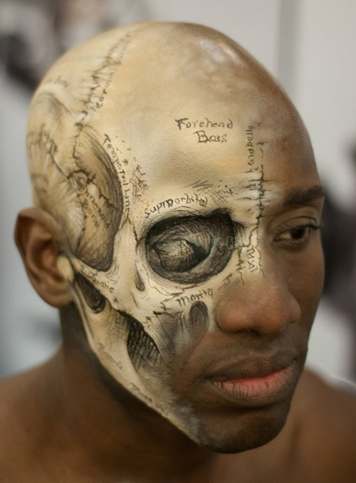 anatomy design skull face paint g rated win - 7112135680