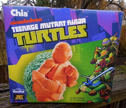 teenage mutant ninja turtles,chia pets