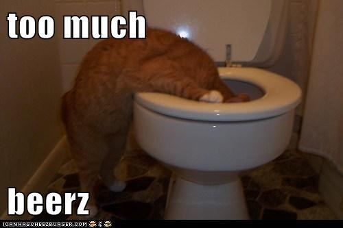 too much  beerz