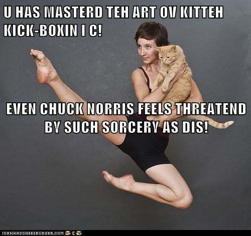 U HAS MASTERD TEH ART OV KITTEH KICK-BOXIN I C! EVEN CHUCK NORRIS FEELS THREATEND BY SUCH SORCERY AS DIS!