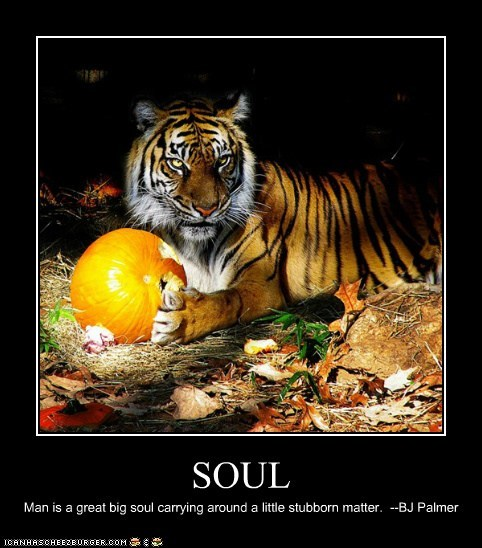 SOUL Man is a great big soul carrying around a little stubborn matter. --BJ Palmer
