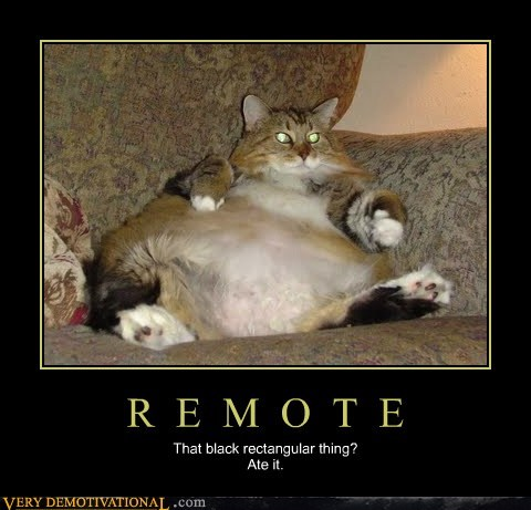 cat remote fat - 7113435648
