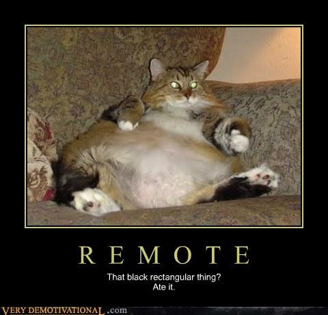 cat remote fat - 7113435648