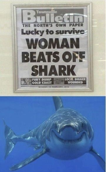 beats off shark poor wording animals dating fails - 7113462784
