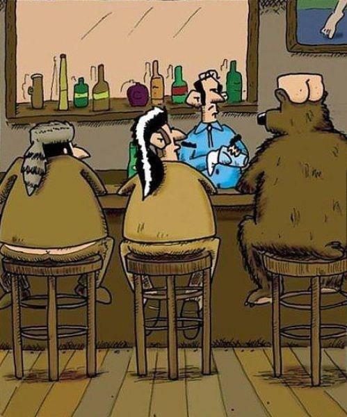 bears comics hats - 7113470208