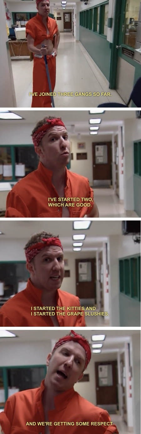nick swardson,RENO 911,TV