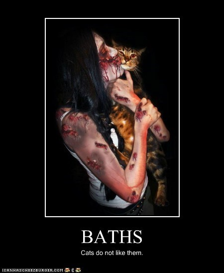 BATHS Cats do not like them.