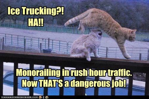job Cats monorail - 7113902848