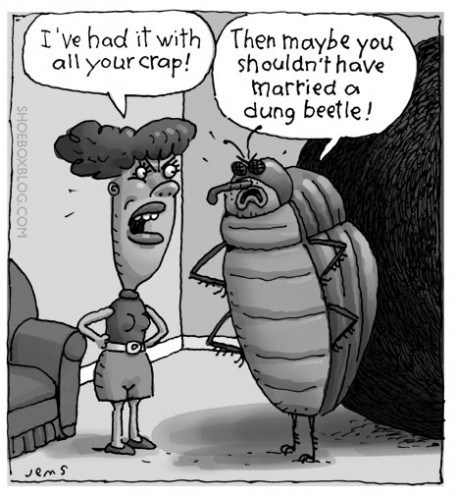 wtf dung beetle married - 7114012672