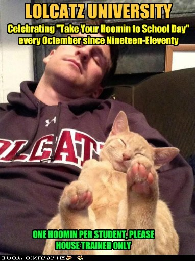 "- - _ _ LOLCATZ UNIVERSITY Celebrating ""Take Your Hoomin to School Day"" every Octember since Nineteen-Eleventy _ g g _ _ ONE HOOMIN PER STUDENT, PLEASE HOUSE TRAINED ONLY"