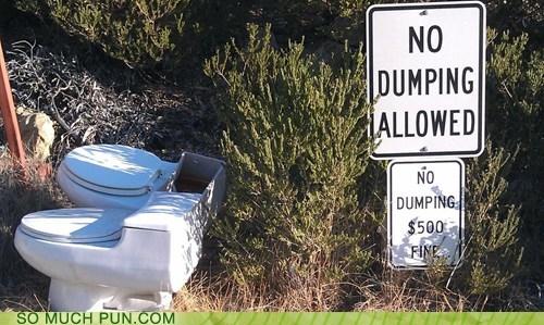 dumping,toilet
