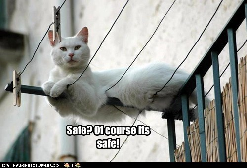 safe sits Cats - 7116398336