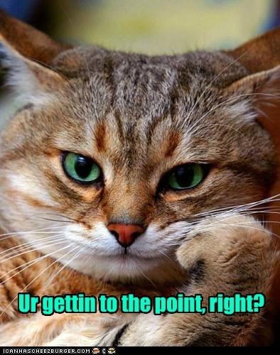 concern,listen,Cats