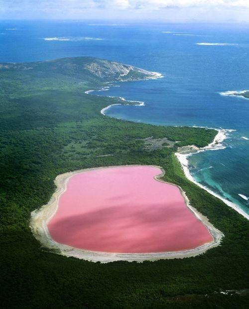 pink geography science lake