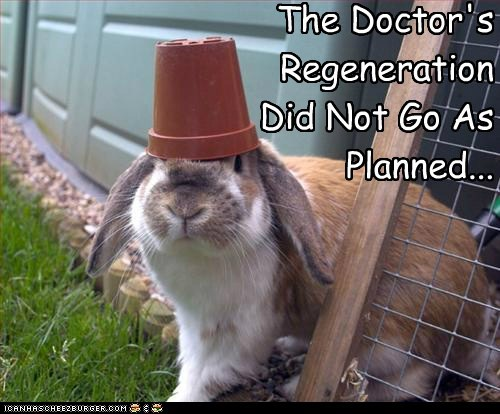 bunnies,FEZ,doctor who,regeneration