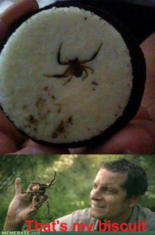spiders,bear grylls,Oreos