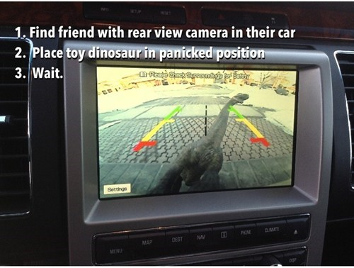 cars,rear-view mirror,dinosaur,prank