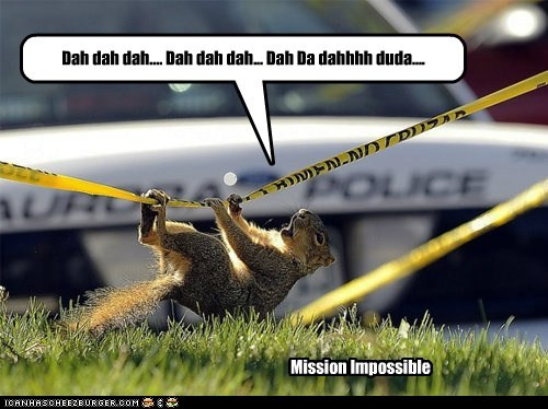 Music,singing,squirrels,mission impossible