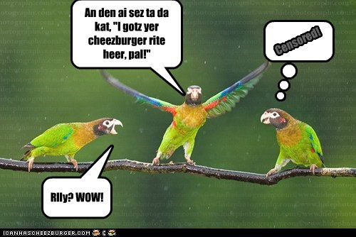 Cheezburger Image 7118511104