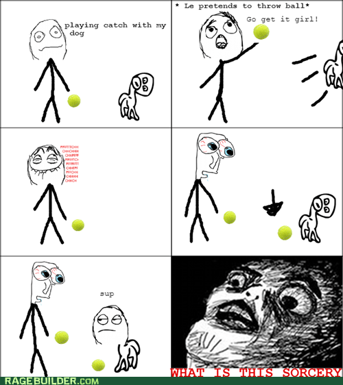 fetch,dogs,what is this sorcery,tennis ball