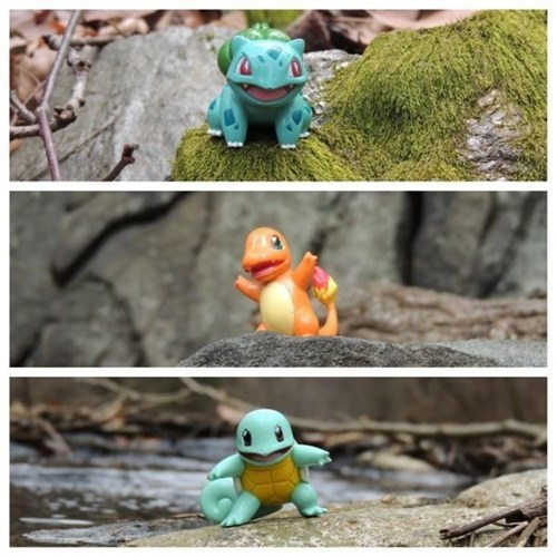 toys IRL pokemon snap