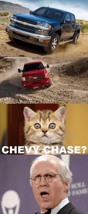 chase kitten Chevy brand Chevy Chase trucks - 7119275264